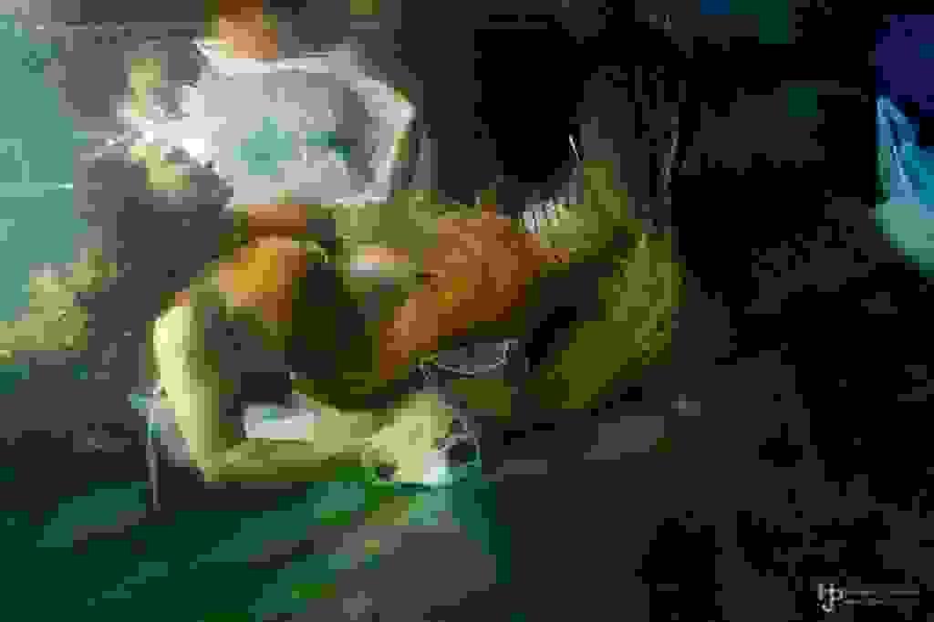 200724-171924-Bearbeitet.jpg